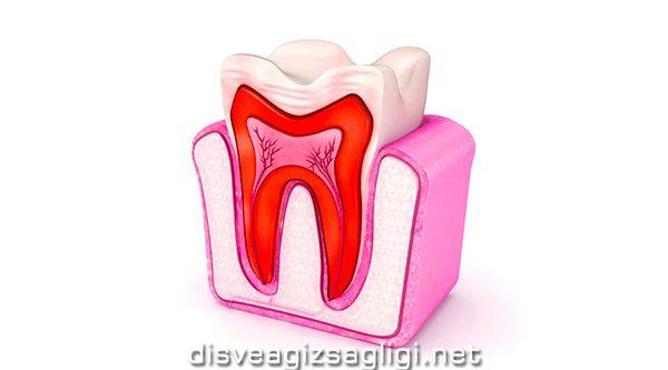 diş kanal tedavisi, diş tedavisi, dişe kanal uygulama,